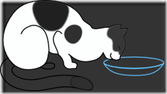 1197114482254355926papapishu_white_cat_drinking.svg.med