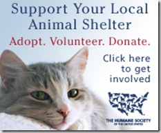 200x165_hsus_support_local_shelters_cat