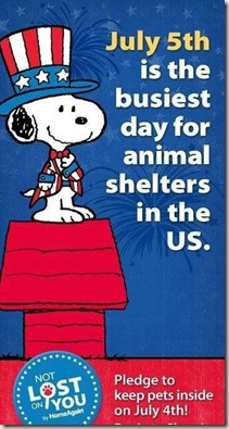 Snoopy-July4th