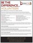 VolunteerFlyer-2-2013