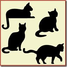ANCD01-cat-set-1-3