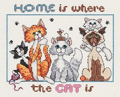 Cat-home is where