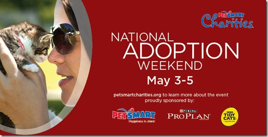 US-National-Adoption-Weekend-Cat-710x360_leaderboard