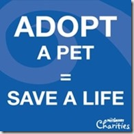 Adopt-Save-PSCharities
