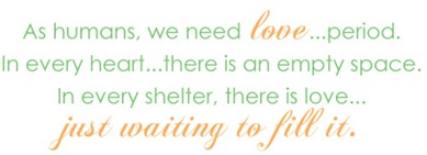 NatCatDayshelter_quote