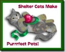 sheltercatsperfectpets_thumb