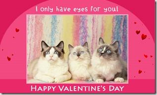 cc_valentine1